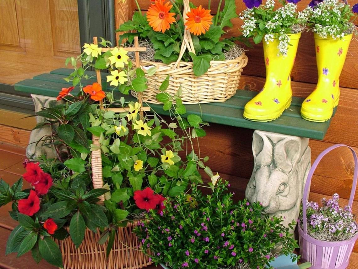 Container Gardening Ideas Hgtv