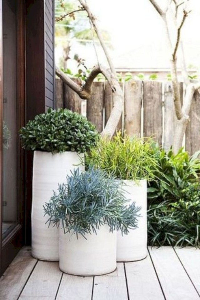 Contemporary Outdoor Planters Ideas 8 Garden Plants