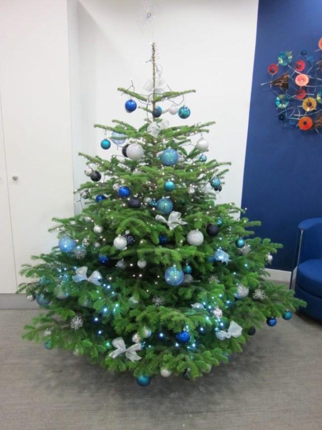 Corporate Christmas Trees Flowers Flourish