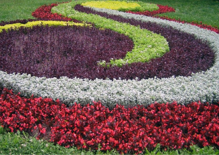 Creative Flower Garden For Beautiful House Spiral