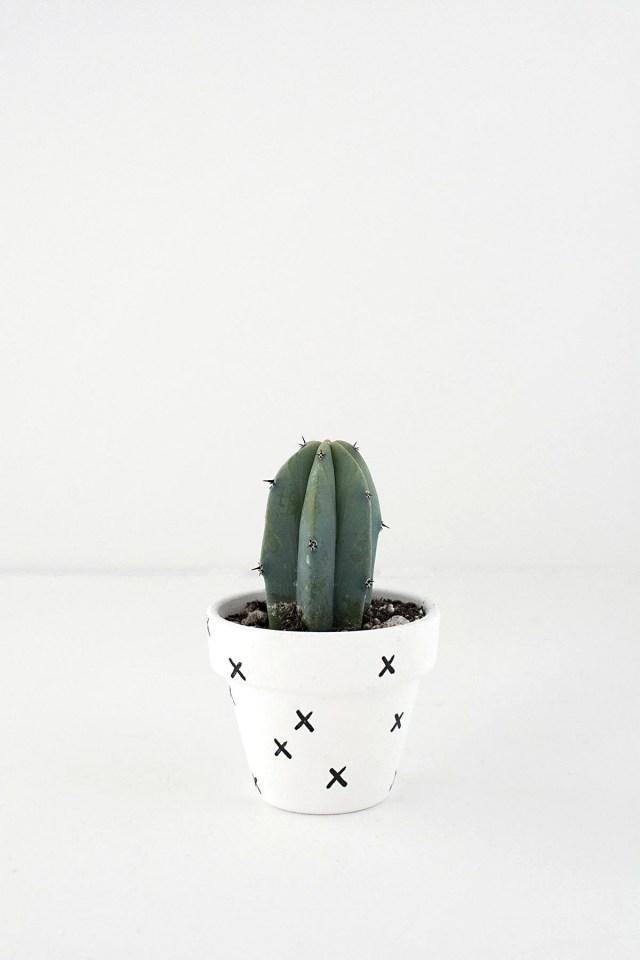 Diy Mini Patterned Plant Pots Homey Oh My