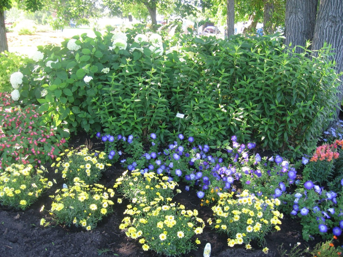 Flower Gardens How To Turn Your Flower Garden Into A