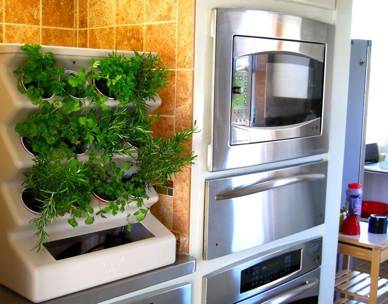 Garden Charming Home Indoor Organic Vegetable Garden Idea