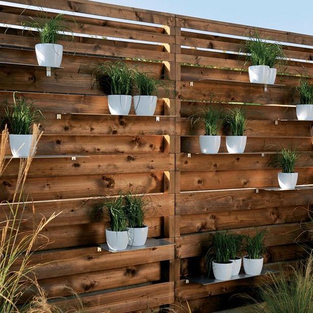 Garden Screening Ideas Diy For Creating A Garden Privacy