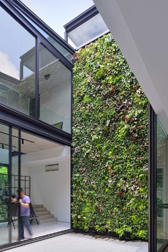 Gorgeous Indoor Living Wall Planter Design Ideas Picture