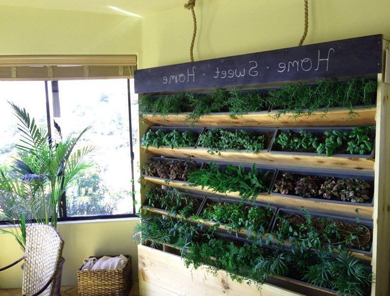 Great Indoor Herb Garden Ideas Thatll Perk Up Your