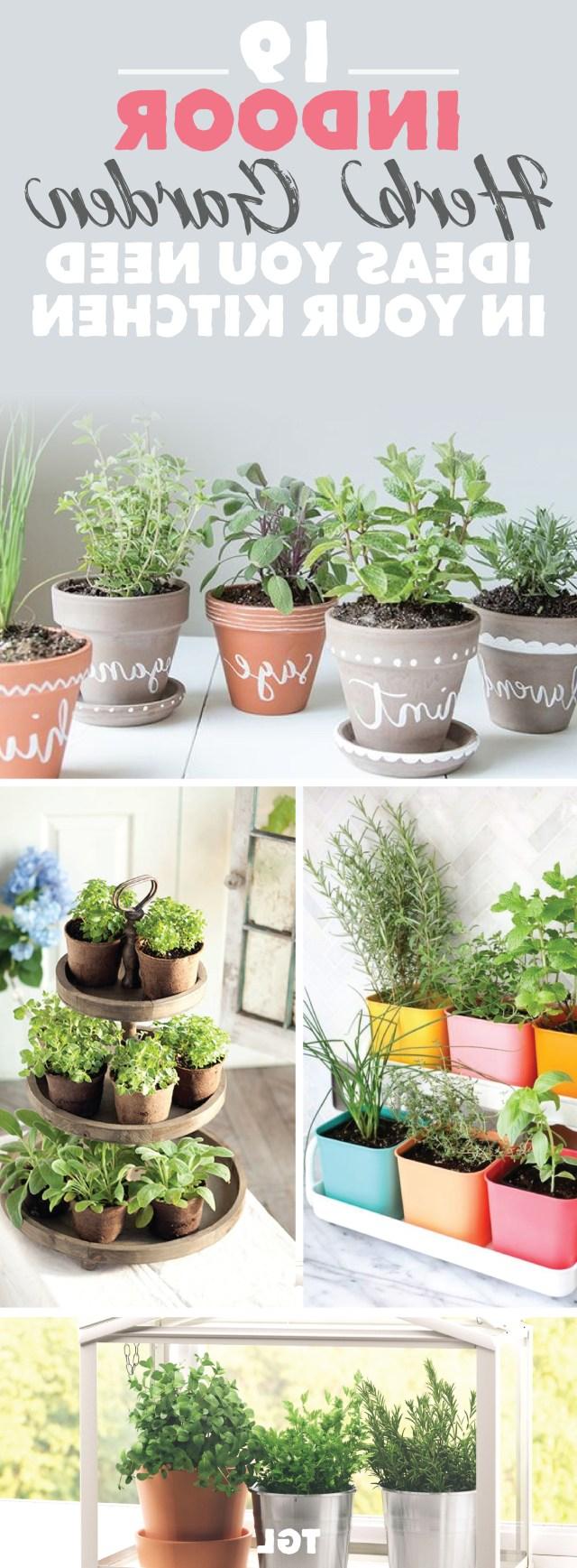 Indoor Herb Garden Diy Herb Garden Ideas Indoor Plant