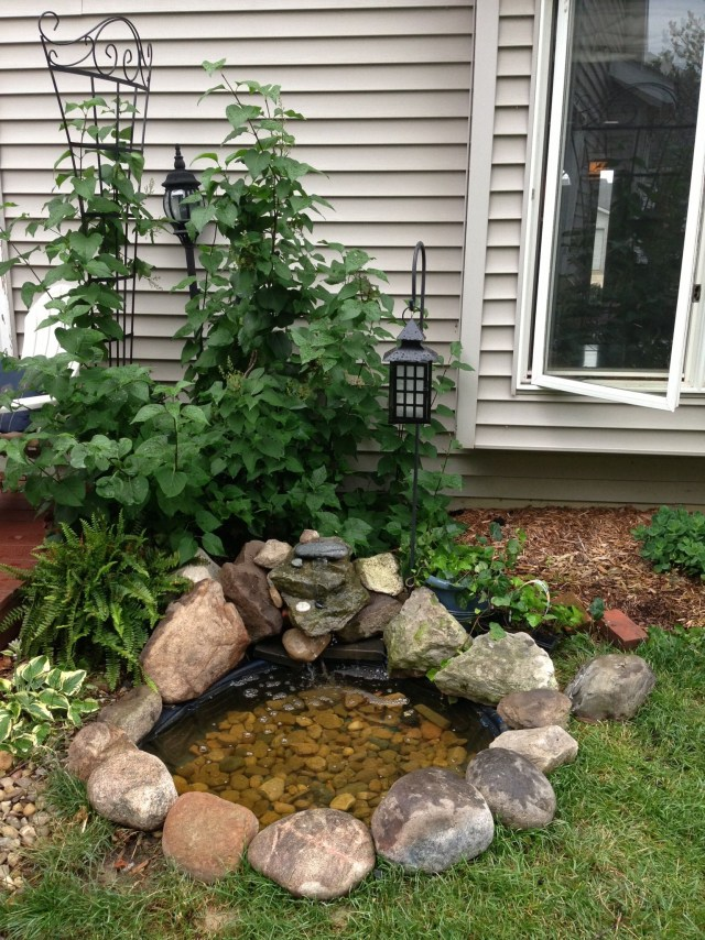 Joel Added A Small Waterfall And Goldfish Pond Small