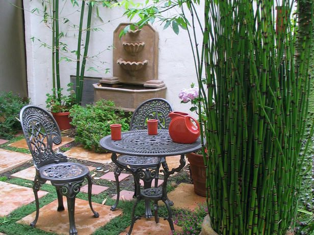 Large Pot Of Bamboo Great Idea Because The Stuff Takes