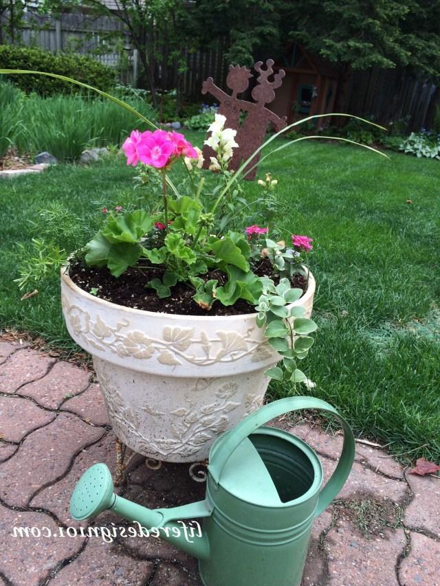 No Fail Flower Container Gardens For Beginners Gardening