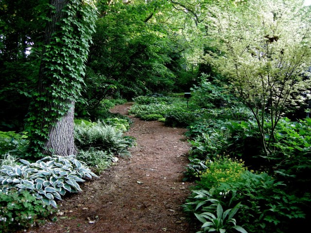 Path Design Mulch Flanked With Lush Plantings For