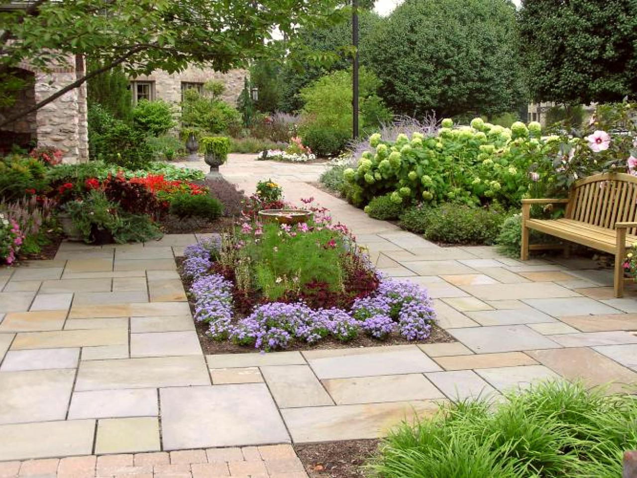 Plants For Your Patio Hgtv