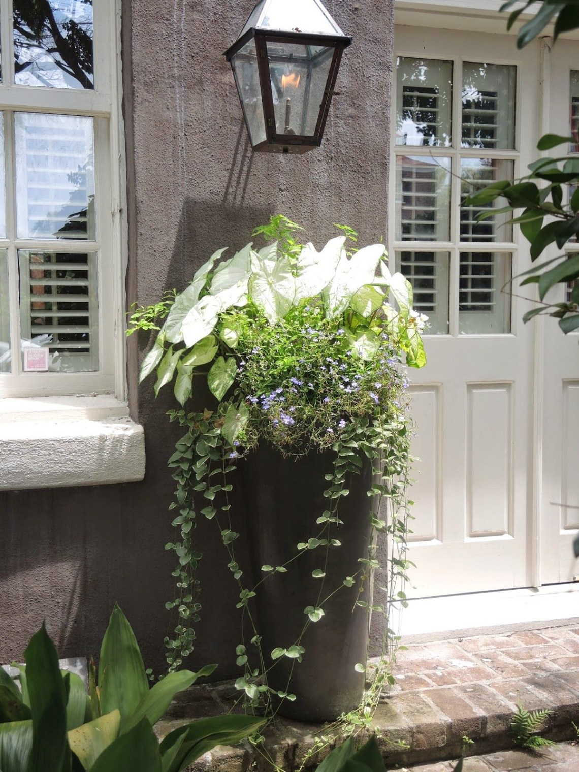 Tall Entrance Porch Planter White Green Charleston Sc