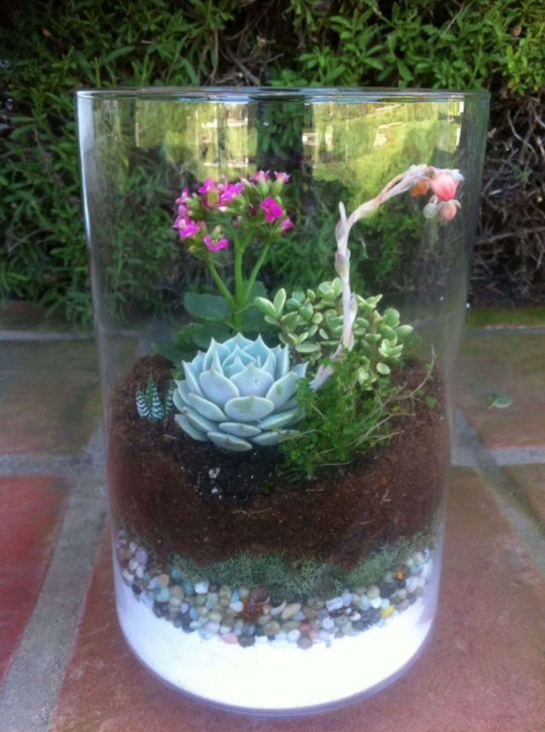 Top 9 Most Beautiful Diy Plant Terrarium Ideas For Your