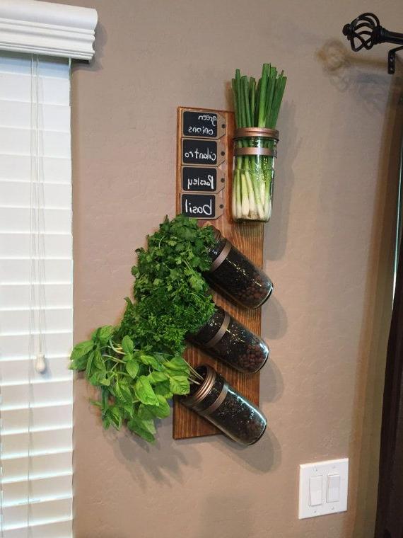 Vertical Garden Indoor Herb Garden Succulent Planter