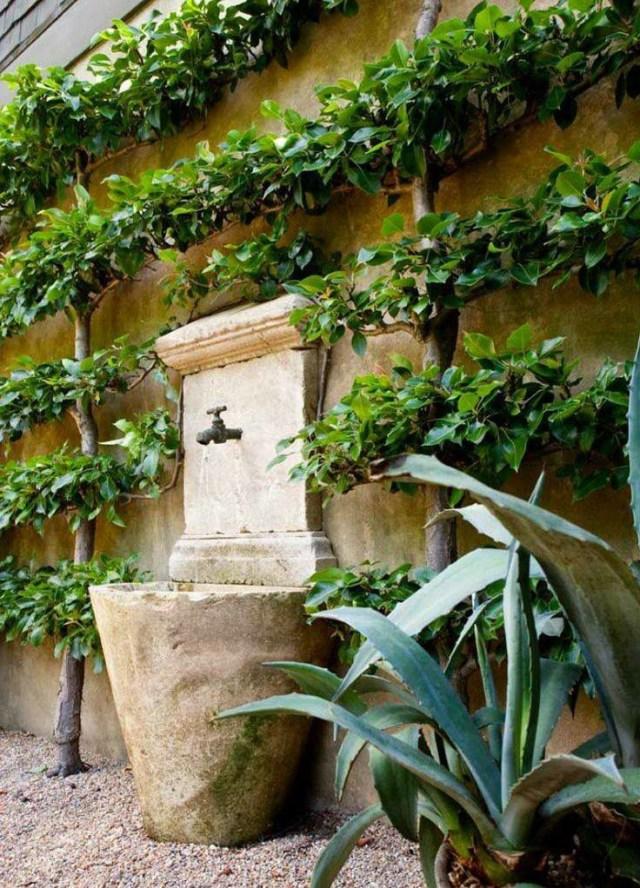 Via The Creeping Fig Fountains Backyard Fountains