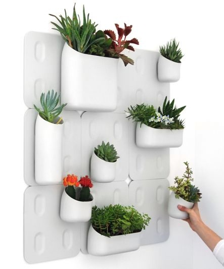 Fresh And Natural House With Indoor Wall Planters Home Decor Report