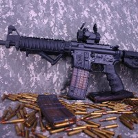U.D.M.C. rifles for the private citizen