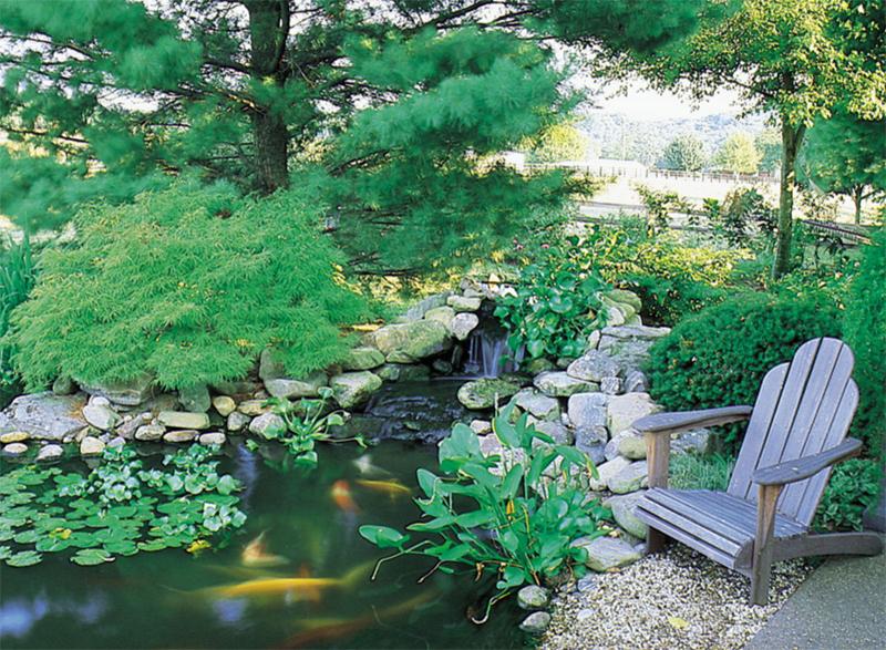 20 Outdoor Koi Ponds to Add a Refreshing Positive Garden ... on Backyard Koi Pond Designs  id=39121