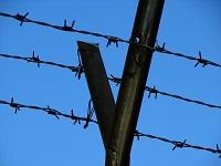 wire 200