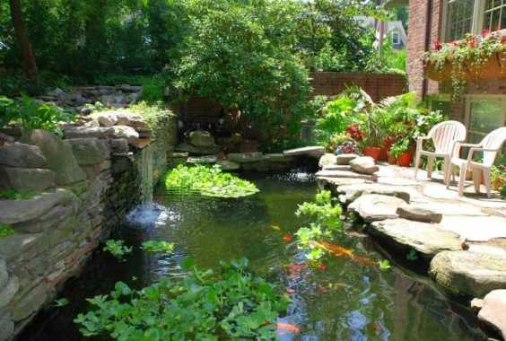 Ponds Featuring A Small Waterfall
