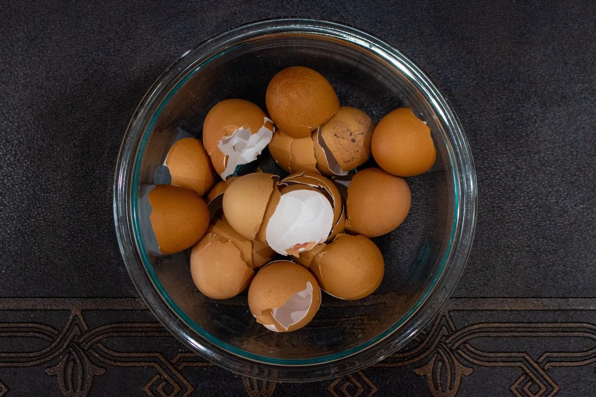 gardening with eggshells