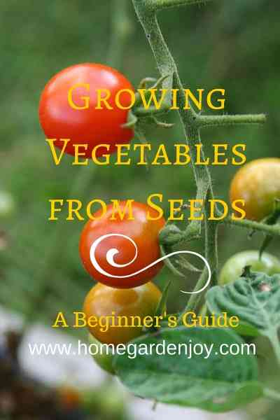 growing vegetables from seeds