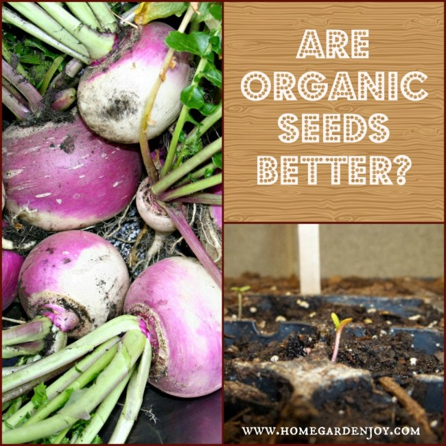 are organic seeds better