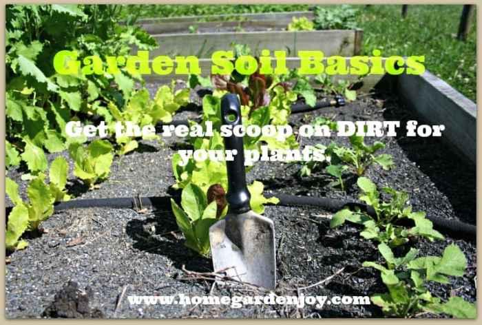 garden soil basics