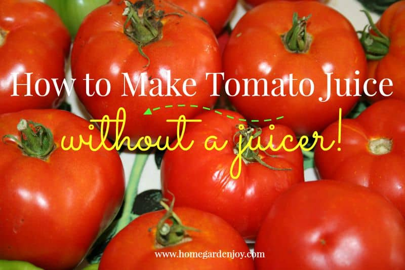 how to make tomato juice graphic