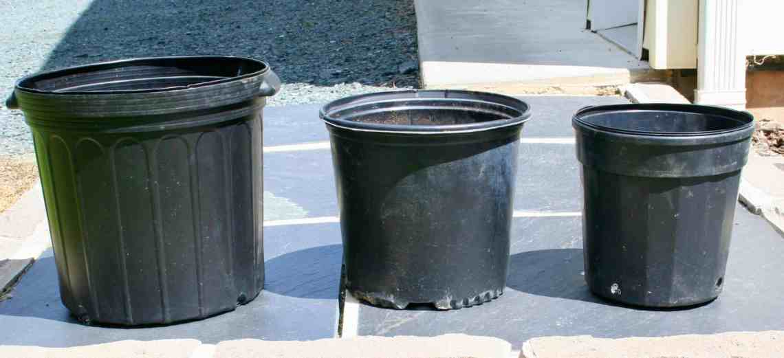 picture of pots for container gardening