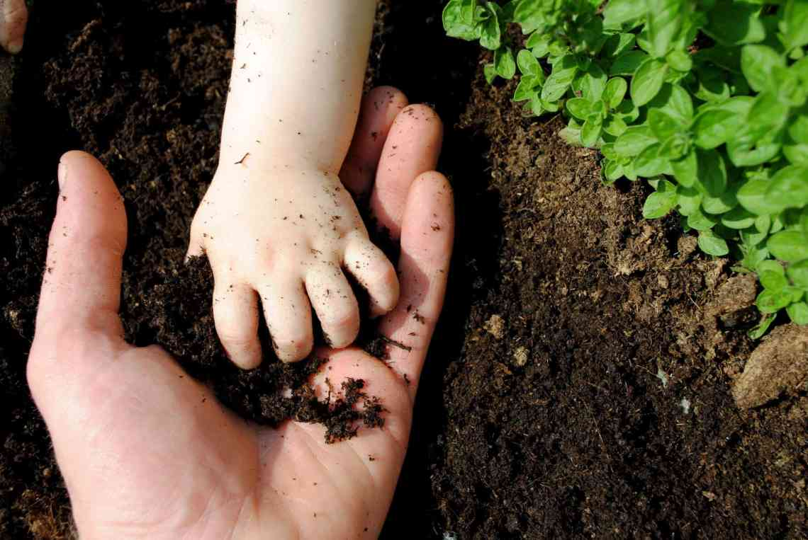 picture of a baby's hand in an adult's in the soil
