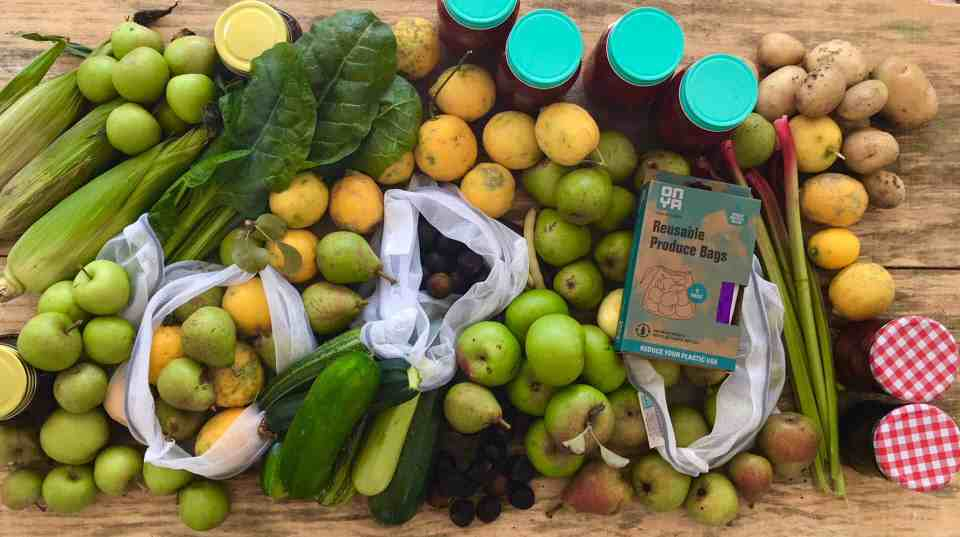Foraging for the Food bank