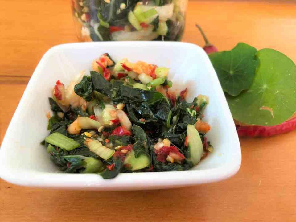 Nasturtium 'Kimchi'
