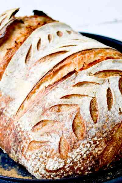 The Easiest No Knead Sourdough Recipe