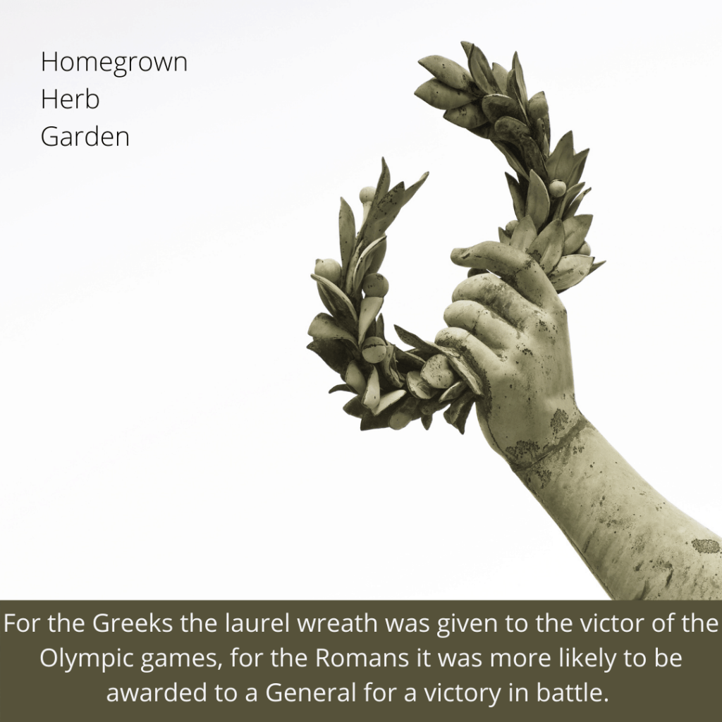 symbolism of the laurel wreath