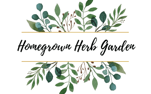 Homegrown Herb Garden