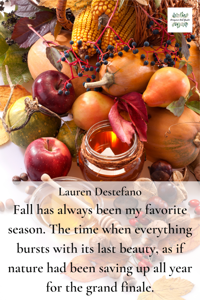 Lauren Destefano Fall has always been my favorite season. The time when everything bursts with its last beauty, as if nature had been saving up all year for the grand finale.