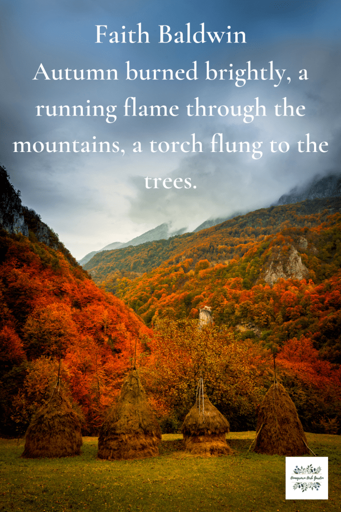 Faith Baldwin Autumn burned brightly, a running flame through the mountains, a torch flung to the trees.