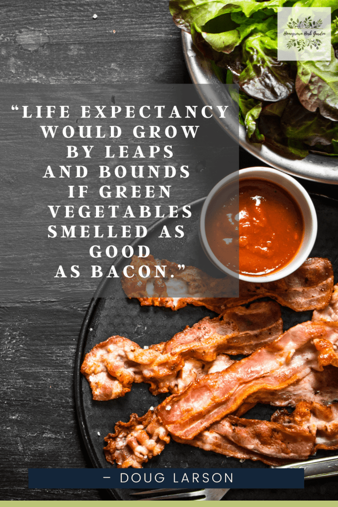 """""""Life expectancy would grow by leaps and bounds if green vegetables smelled as good as bacon."""" –Doug Larson"""