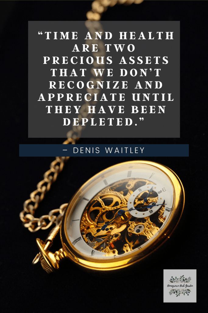 """""""Time And health are two precious assets that we don't recognize and appreciate until they have been depleted.""""  – Denis Waitley"""