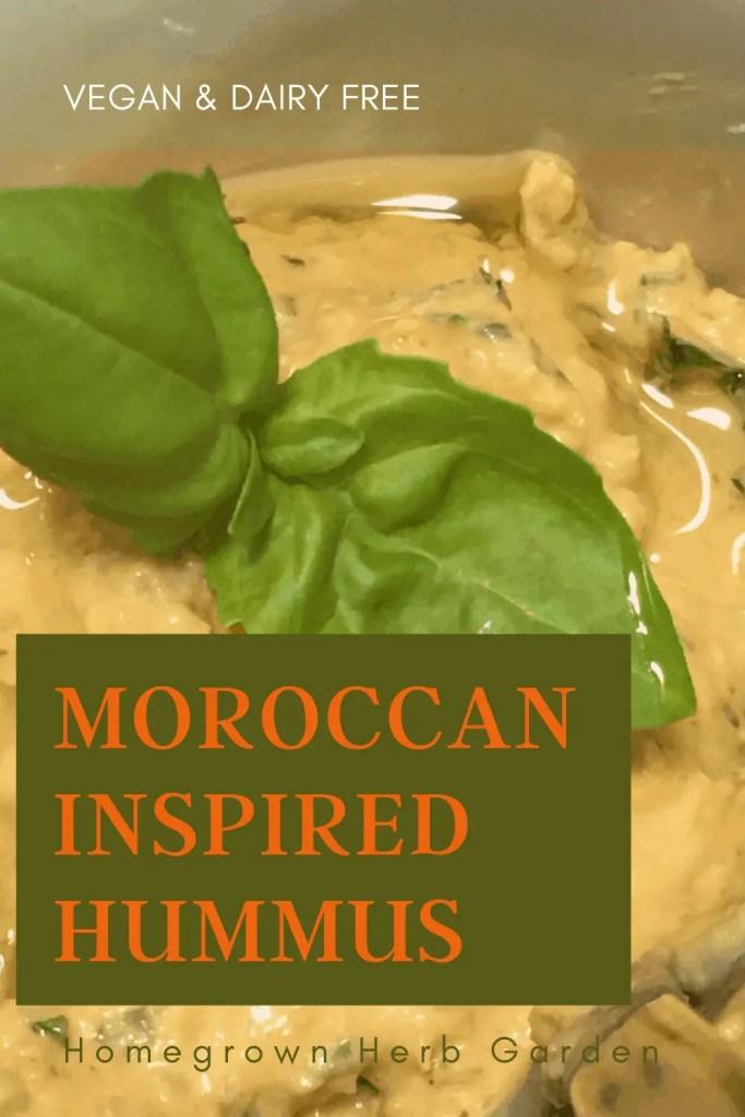 Healthy dairy free moroccan hummus dip