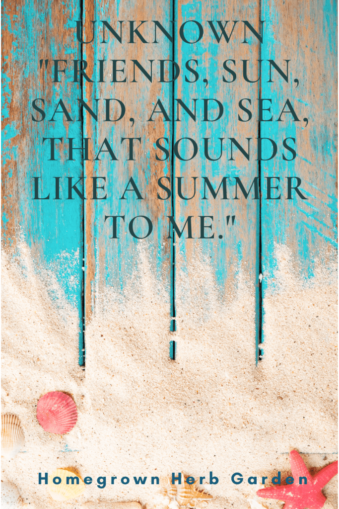 """Unknown """"Friends, sun, sand, and sea, that sounds like a summer to me."""""""