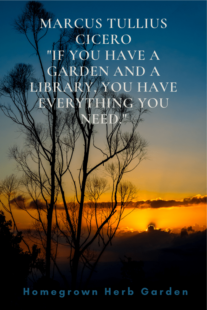 """Marcus Tullius Cicero """"If you have a garden and a library, you have everything you need."""""""