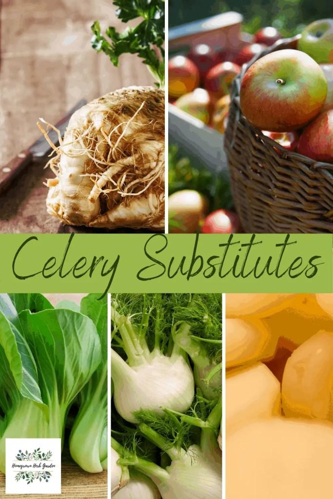 celery substitutes