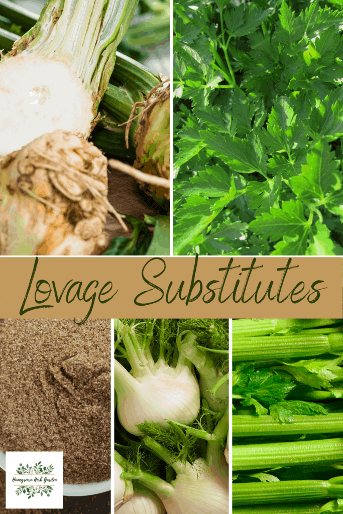 lovage substitutes