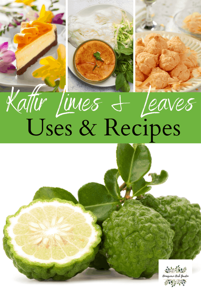 uses and recipes for kaffir limes and kaffir leaves