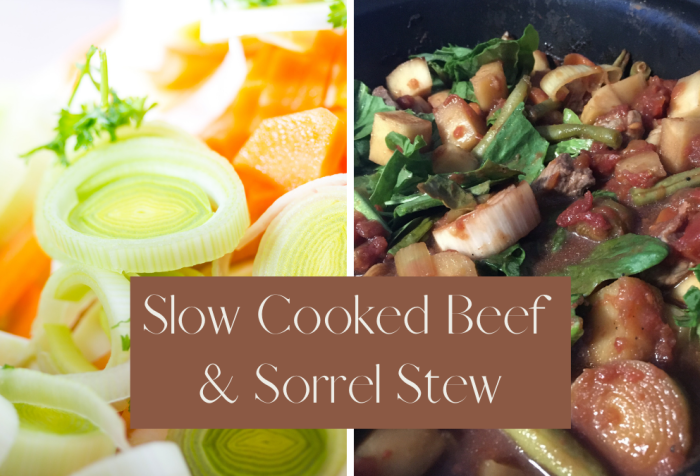 beef and sorrel stew