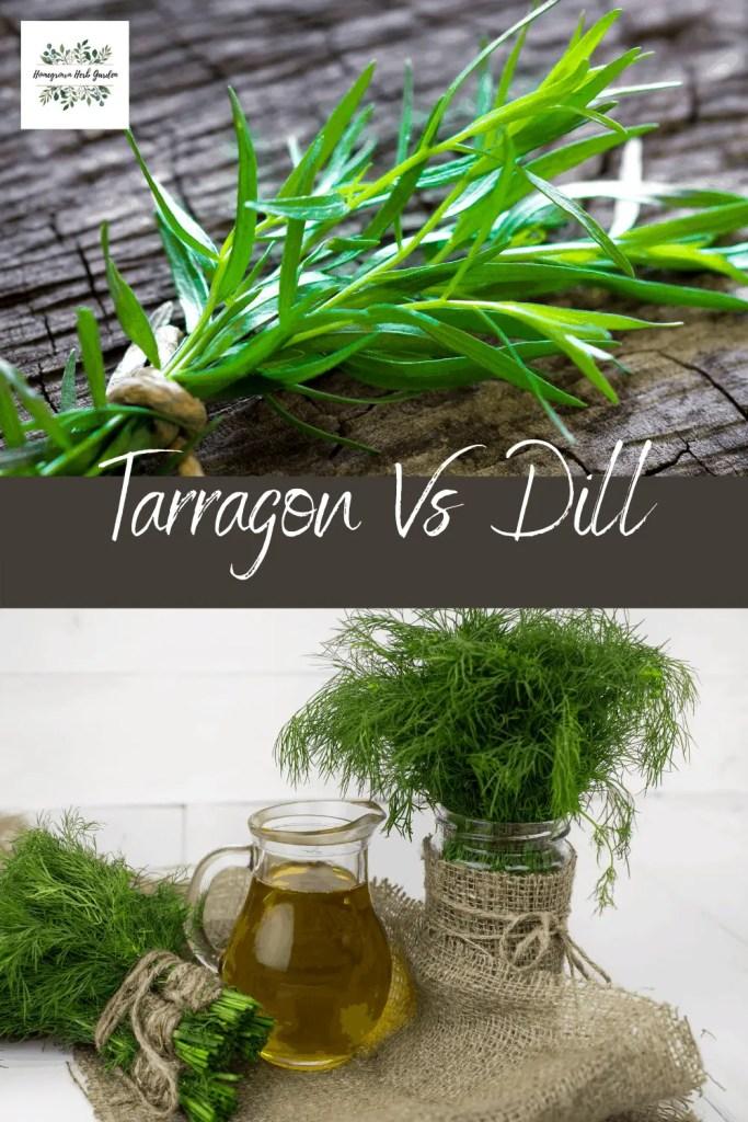 Tarragon vs dill