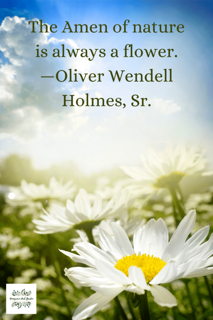 The Amen of nature is always a flower. —Oliver Wendell Holmes, Sr.